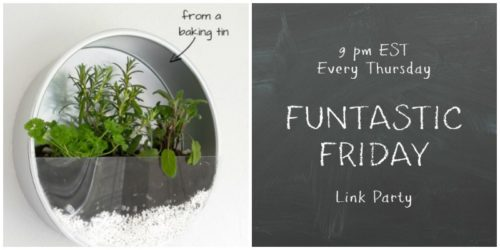 Funtastic-Friday-116-Host-Favorites-Debra