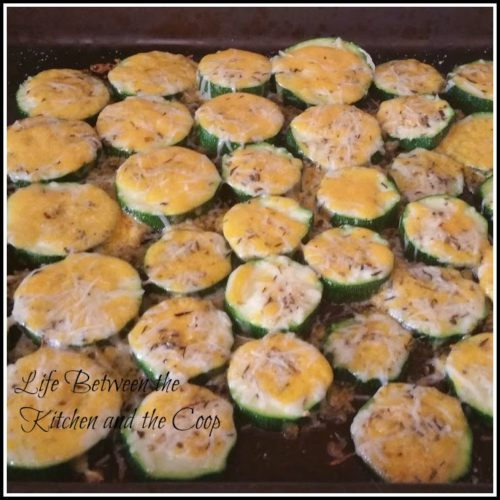Funtastic-Friday-135_Most-Viewed_baked-zucchini-bites